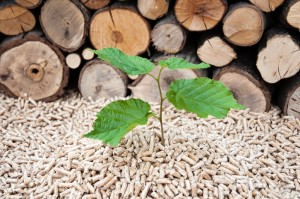 Financial Appraisals