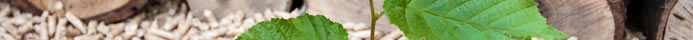 recycling routes top